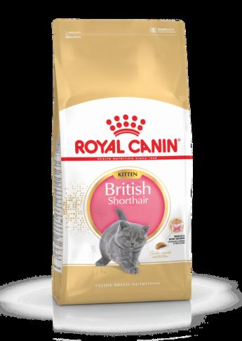 Royal Canin BRITISH SHORTHAIR KITTEN, 2 кг