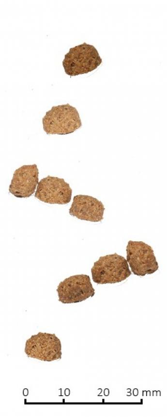 Farmina N&D Low Grain Cat Chicken & Pomegranate Neutered