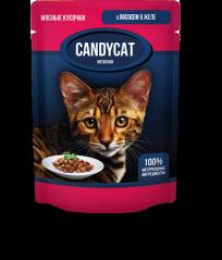 Candycat Мясные кусочки с Лососем в желе